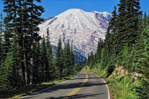 washington_road